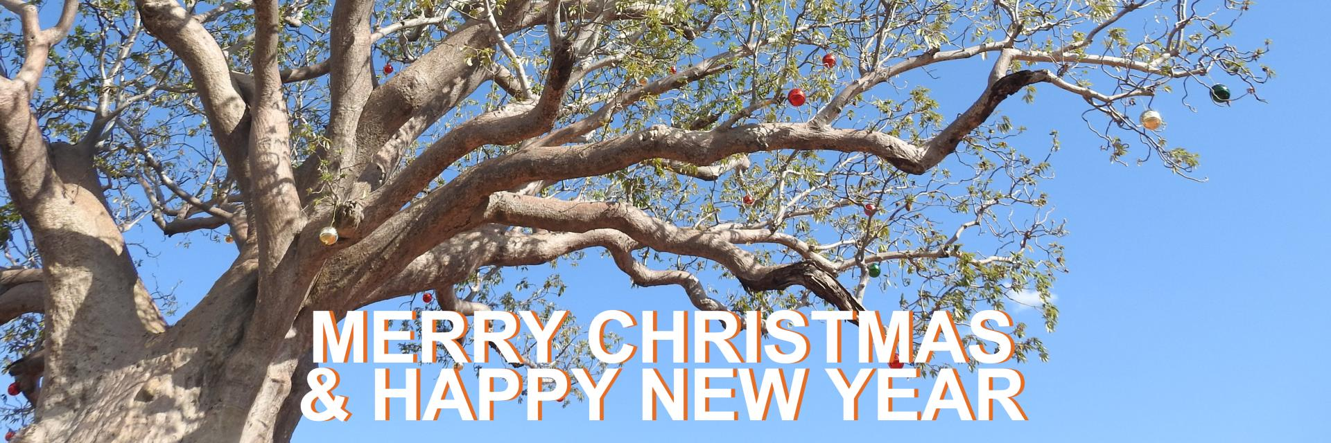 Shire President's Christmas Message